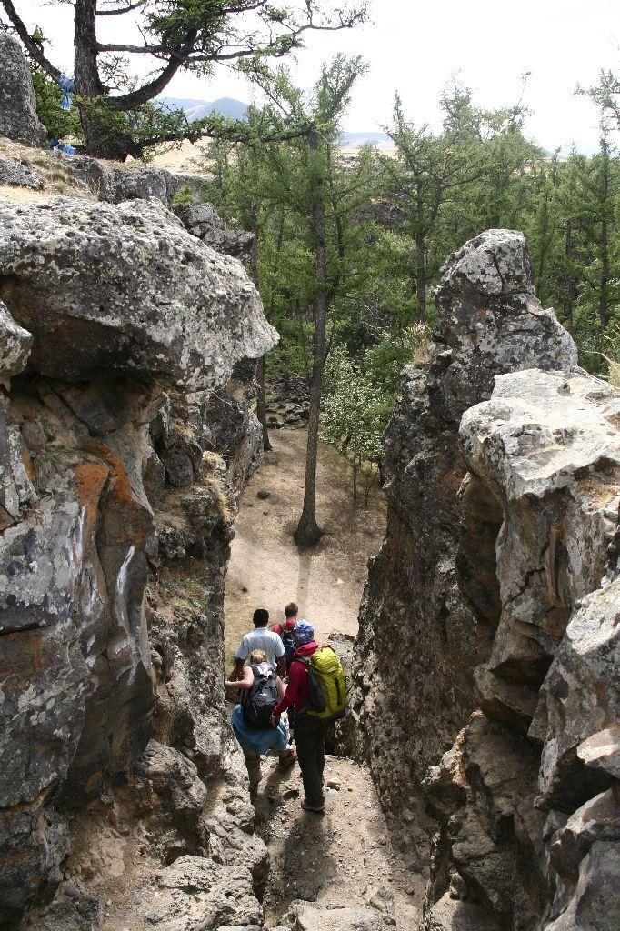 Mongolei,Gambda,Wald