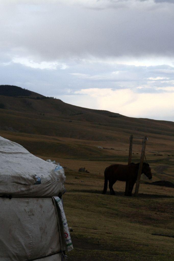 Mongolei,Jurte,Tsenkher Jiguur,Pferd