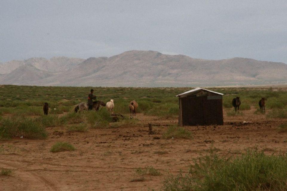 Mongolei,Mongolen,Pferde,Reiter