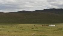 Bild am 2008-08-26