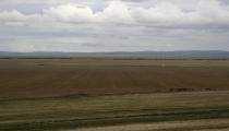 Bild am 2008-09-03