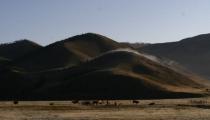 Bild am 2008-09-06