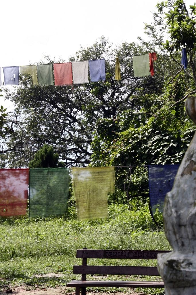 Nepal,Kathmandu,Gebetsfahnen