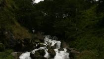 Bild am 2008-09-23